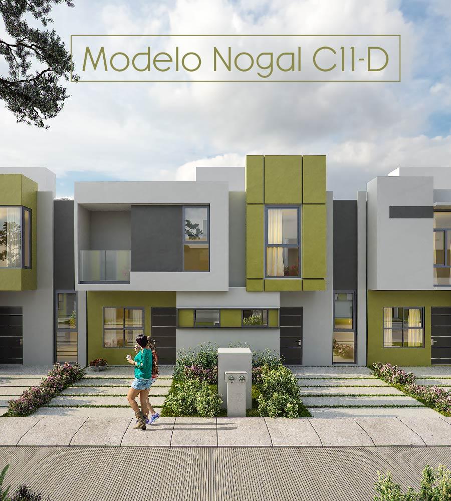 ABEDULES MODELO C11-C Y D-02