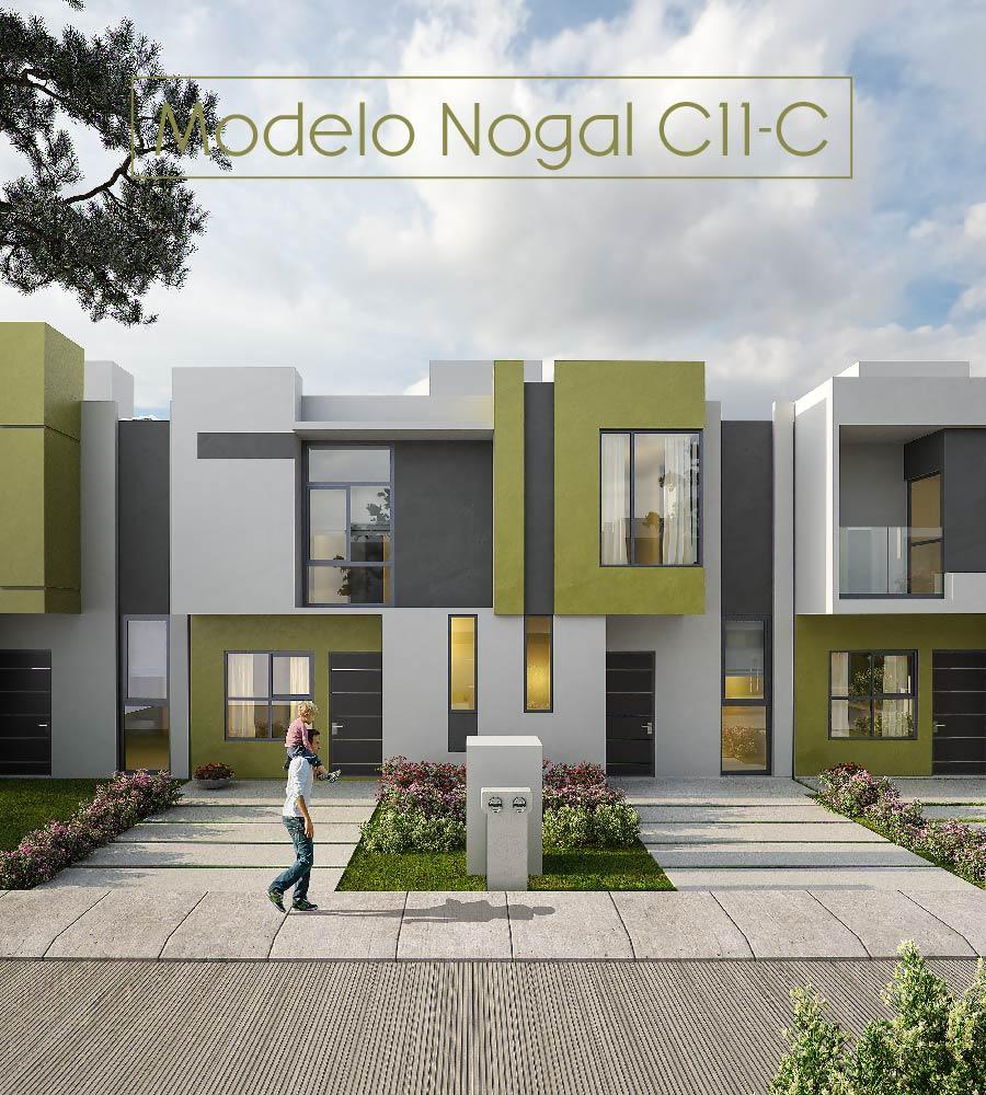 ABEDULES MODELO C11-C Y D_Mesa de trabajo 1