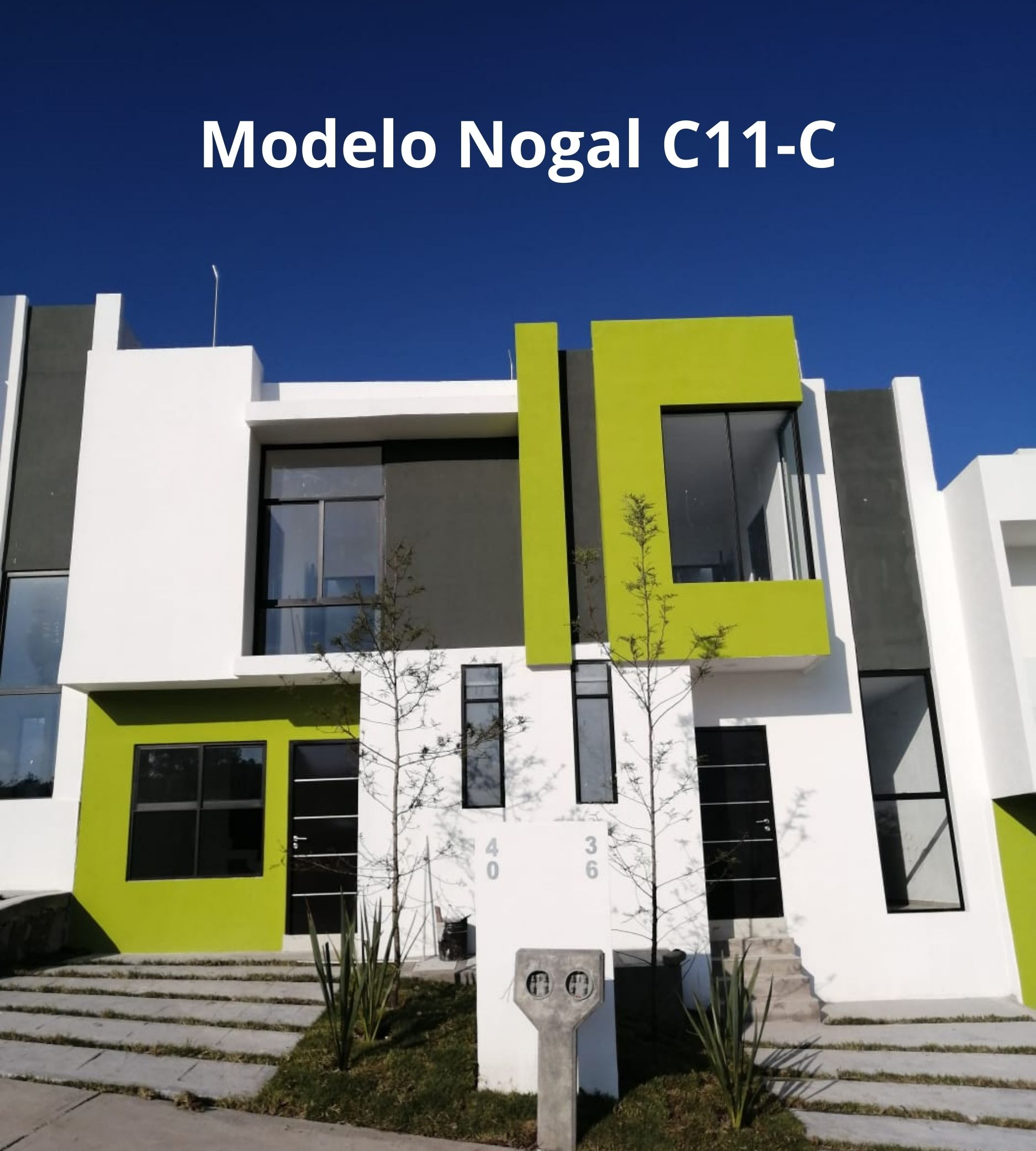 Modelo C11-C Venti Abedules